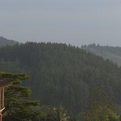 Отель Amaya Hills Шри-Ланка, Канди - отзывы, цены и фото номеров - забронировать отель Amaya Hills онлайн приотельная территория фото 2
