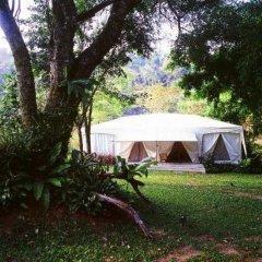 Отель Khao Kheaw es-ta-te Camping Resort & Safari фото 4