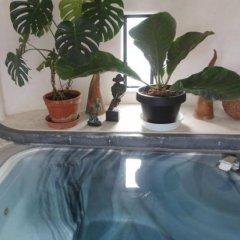 Отель J Garden Япония, Ито - отзывы, цены и фото номеров - забронировать отель J Garden онлайн фото 4
