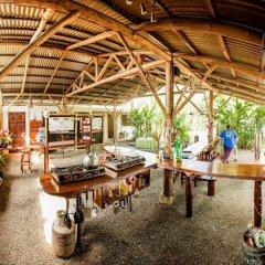 Отель Cabinas Tropicales Puerto Jimenez Ринкон бассейн фото 2