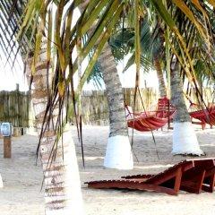 Отель Ayikoo Beach House Гана, Шама - отзывы, цены и фото номеров - забронировать отель Ayikoo Beach House онлайн фото 8