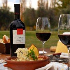 Отель Algodon Wine Estates and Champions Club Сан-Рафаэль гостиничный бар