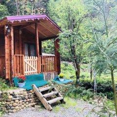 Tanura Bungalows Турция, Чамлыхемшин - отзывы, цены и фото номеров - забронировать отель Tanura Bungalows онлайн комната для гостей фото 5