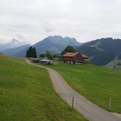 Отель Gstaad - Amazing Lake Chalet спортивное сооружение