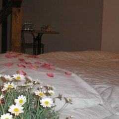 Отель Pension Groll Чехия, Пльзень - отзывы, цены и фото номеров - забронировать отель Pension Groll онлайн комната для гостей фото 2