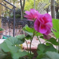 Отель Albergo la Primula Италия, Кьянчиано Терме - отзывы, цены и фото номеров - забронировать отель Albergo la Primula онлайн фото 5