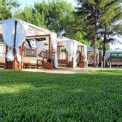 Отель Impuls Palace Болгария, Видин - отзывы, цены и фото номеров - забронировать отель Impuls Palace онлайн фото 3