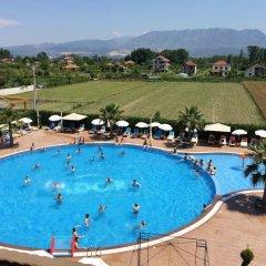 Отель Ador MG Тирана бассейн