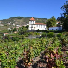 Отель Casa das Torres de Oliveira Португалия, Мезан-Фриу - отзывы, цены и фото номеров - забронировать отель Casa das Torres de Oliveira онлайн фото 5