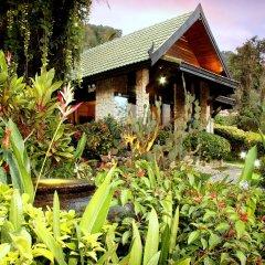 Отель Boomerang Village Resort Таиланд, Пхукет - 8 отзывов об отеле, цены и фото номеров - забронировать отель Boomerang Village Resort онлайн фото 4