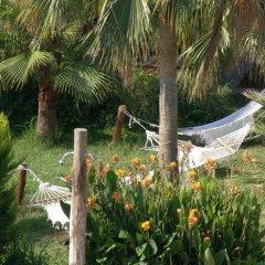 Xanthos Patara Турция, Патара - отзывы, цены и фото номеров - забронировать отель Xanthos Patara онлайн фото 13
