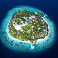 Отель Bandos Maldives бассейн фото 2