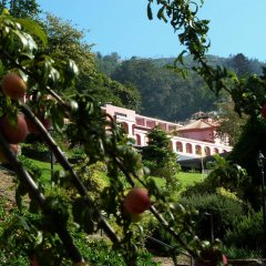 Hotel Quinta da Serra фото 2