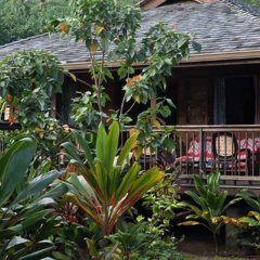 Отель Moorea Surf Bed and Breakfast фото 4