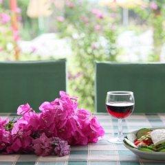 Отель Rhodian Sun Греция, Петалудес - отзывы, цены и фото номеров - забронировать отель Rhodian Sun онлайн фото 2