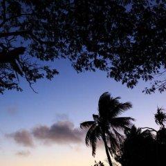 Отель Funky Fish Beach & Surf Resort Фиджи, Остров Малоло - отзывы, цены и фото номеров - забронировать отель Funky Fish Beach & Surf Resort онлайн