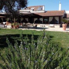 Отель Masseria Alberotanza Конверсано приотельная территория фото 2