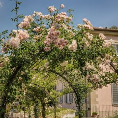 Отель Villa Cora фото 13