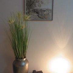 Отель Bed & Breakfast Villa Marija M. L. Сербия, Белград - отзывы, цены и фото номеров - забронировать отель Bed & Breakfast Villa Marija M. L. онлайн спа