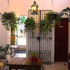 Отель Casa Canario Bed & Breakfast фото 2