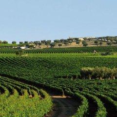 Отель Masseria Amastuola Wine Resort Криспьяно