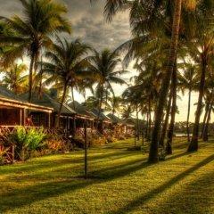 Отель Club Fiji Resort фото 10