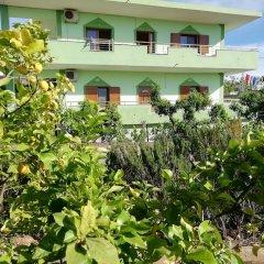 Отель Skrapalli Албания, Ксамил - отзывы, цены и фото номеров - забронировать отель Skrapalli онлайн фото 5