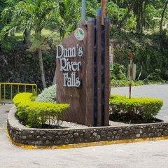 Отель Ocho Rios Getaway Villa at The Palms фото 9