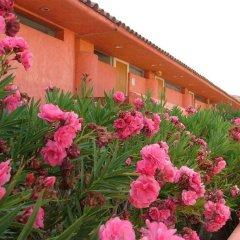 Hotel San Felipe Marina Resort интерьер отеля фото 2