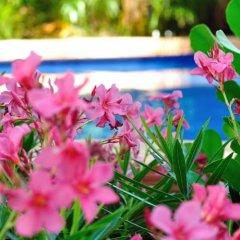 Отель La Pasion Hotel Boutique Мексика, Плая-дель-Кармен - отзывы, цены и фото номеров - забронировать отель La Pasion Hotel Boutique онлайн приотельная территория