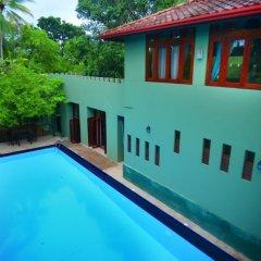 Отель Tropical Retreat с домашними животными