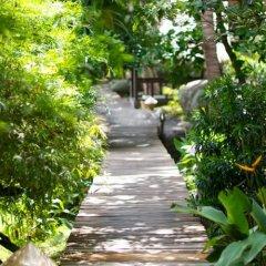 Отель Sensi Paradise Beach Resort фото 6