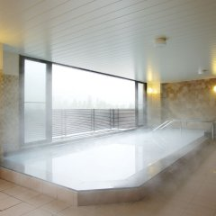 Tateyama Kokusai Hotel Тояма бассейн