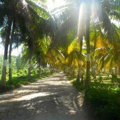 Отель Huahine Vacances пляж