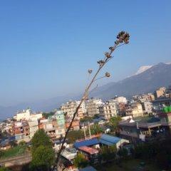 Отель Crown Himalayas Непал, Покхара - отзывы, цены и фото номеров - забронировать отель Crown Himalayas онлайн фото 13