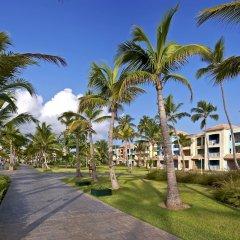 Отель Ocean Blue & Beach Resort - Все включено Доминикана, Пунта Кана - 8 отзывов об отеле, цены и фото номеров - забронировать отель Ocean Blue & Beach Resort - Все включено онлайн фото 4