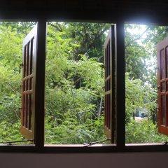Отель Jungle Guest House Шри-Ланка, Галле - отзывы, цены и фото номеров - забронировать отель Jungle Guest House онлайн комната для гостей