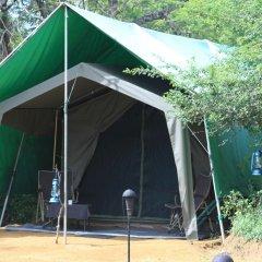 Отель Mahoora Tented Safari Camp - Kumana Шри-Ланка, Яла - отзывы, цены и фото номеров - забронировать отель Mahoora Tented Safari Camp - Kumana онлайн детские мероприятия