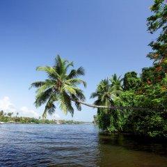 Отель Centara Ceysands Resort & Spa Sri Lanka фото 4