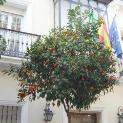 Отель Hostal Roma фото 2