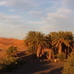 Отель Dar Lola Марокко, Мерзуга - отзывы, цены и фото номеров - забронировать отель Dar Lola онлайн приотельная территория
