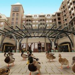Отель Grand Pacific Канада, Виктория - отзывы, цены и фото номеров - забронировать отель Grand Pacific онлайн фото 2