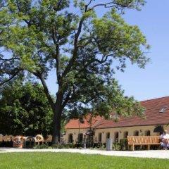 Hotel U Zvonu Пльзень помещение для мероприятий