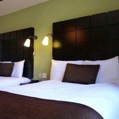 Отель Posada Terranova Мексика, Сан-Хосе-дель-Кабо - отзывы, цены и фото номеров - забронировать отель Posada Terranova онлайн комната для гостей фото 3