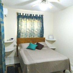 Отель Skyblue Beach Apartments Сент-Винсент и Гренадины, Остров Бекия - отзывы, цены и фото номеров - забронировать отель Skyblue Beach Apartments онлайн комната для гостей фото 3
