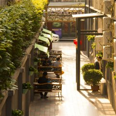 Отель Beijing Sunrise Hotel Beihai Branch - Hostel Китай, Пекин - отзывы, цены и фото номеров - забронировать отель Beijing Sunrise Hotel Beihai Branch - Hostel онлайн развлечения