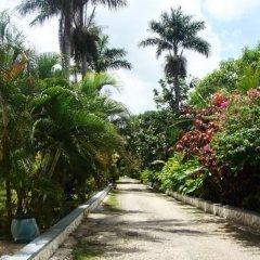 Отель Pure Garden Resort Negril фото 9