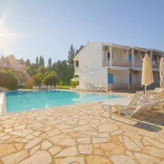Отель Olive Grove Resort бассейн