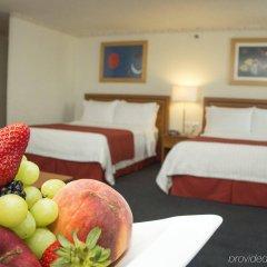 Отель Holiday Inn Mexico Coyoacan Мехико в номере