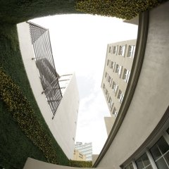 Отель Isaaya Hotel Boutique by WTC Мексика, Мехико - отзывы, цены и фото номеров - забронировать отель Isaaya Hotel Boutique by WTC онлайн фото 2